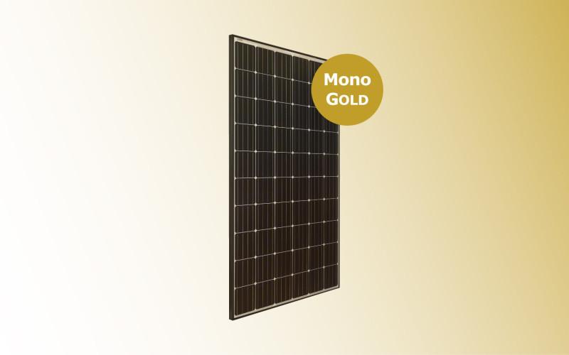 Mono GOLD con sfondo