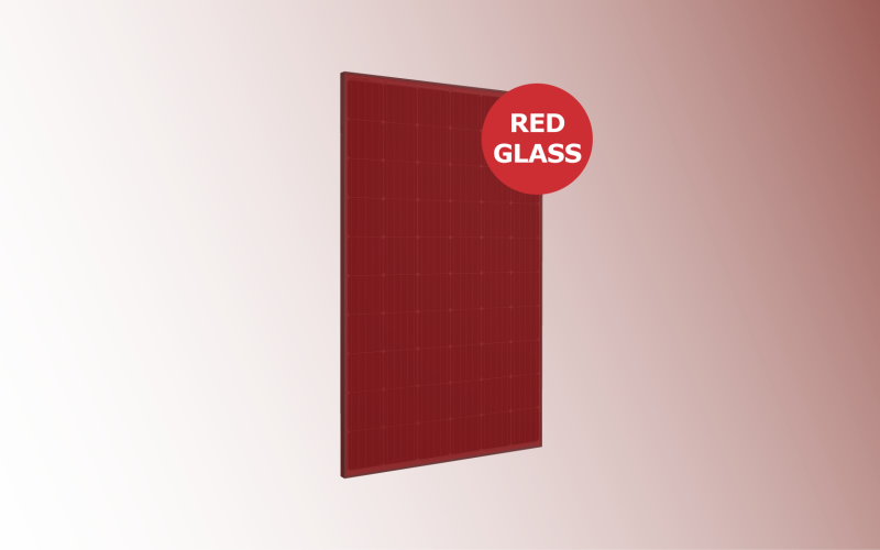 Mono RED GLASS con sfondo